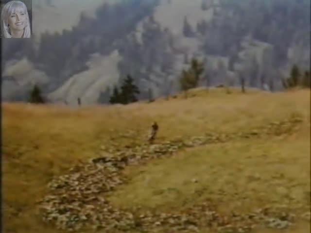 Bawarskie Przypadki Film Cda